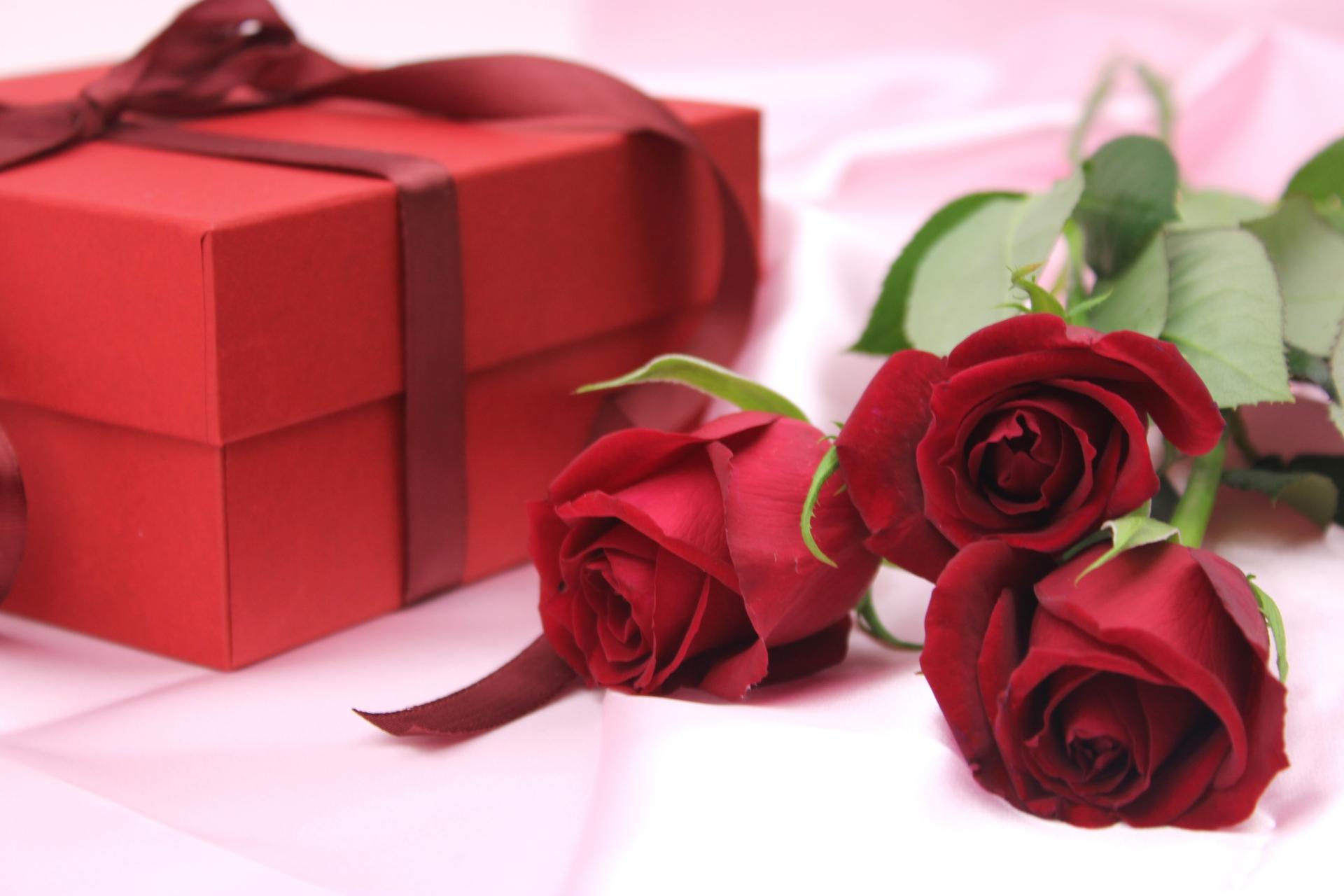 赤いバラとプレゼント
