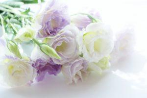 法事やお盆にお供えするお花の相場やマナー。バラはOK?