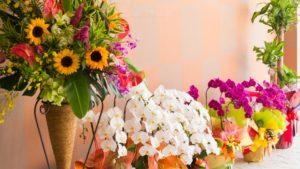 開店祝いはお花!アレンジメントやスタンド、おしゃれな観葉植物