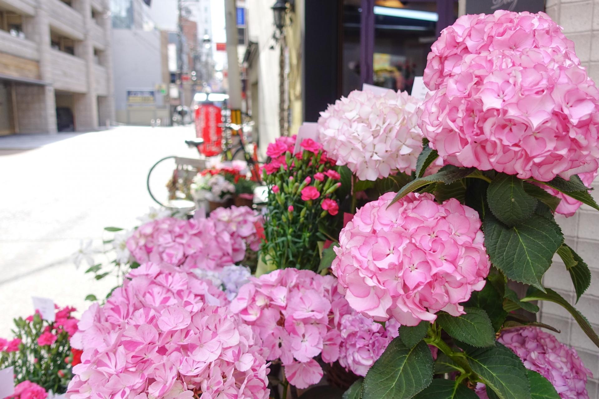 お花屋さんの外観