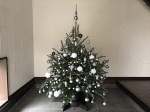 もみの木を使ったクリスマスツリー、オーナメントと飾り方を紹介します