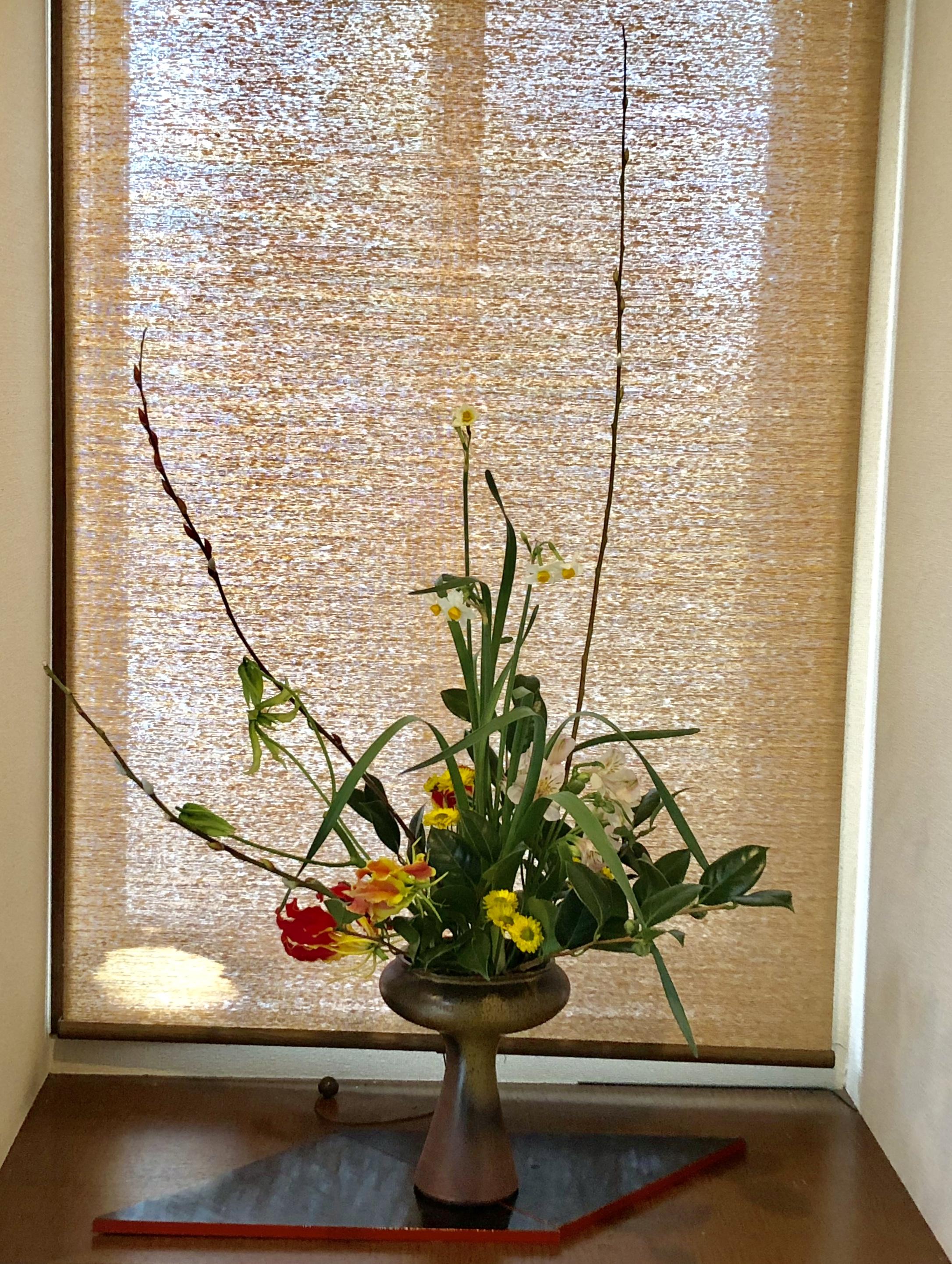 迎春花の様なお花