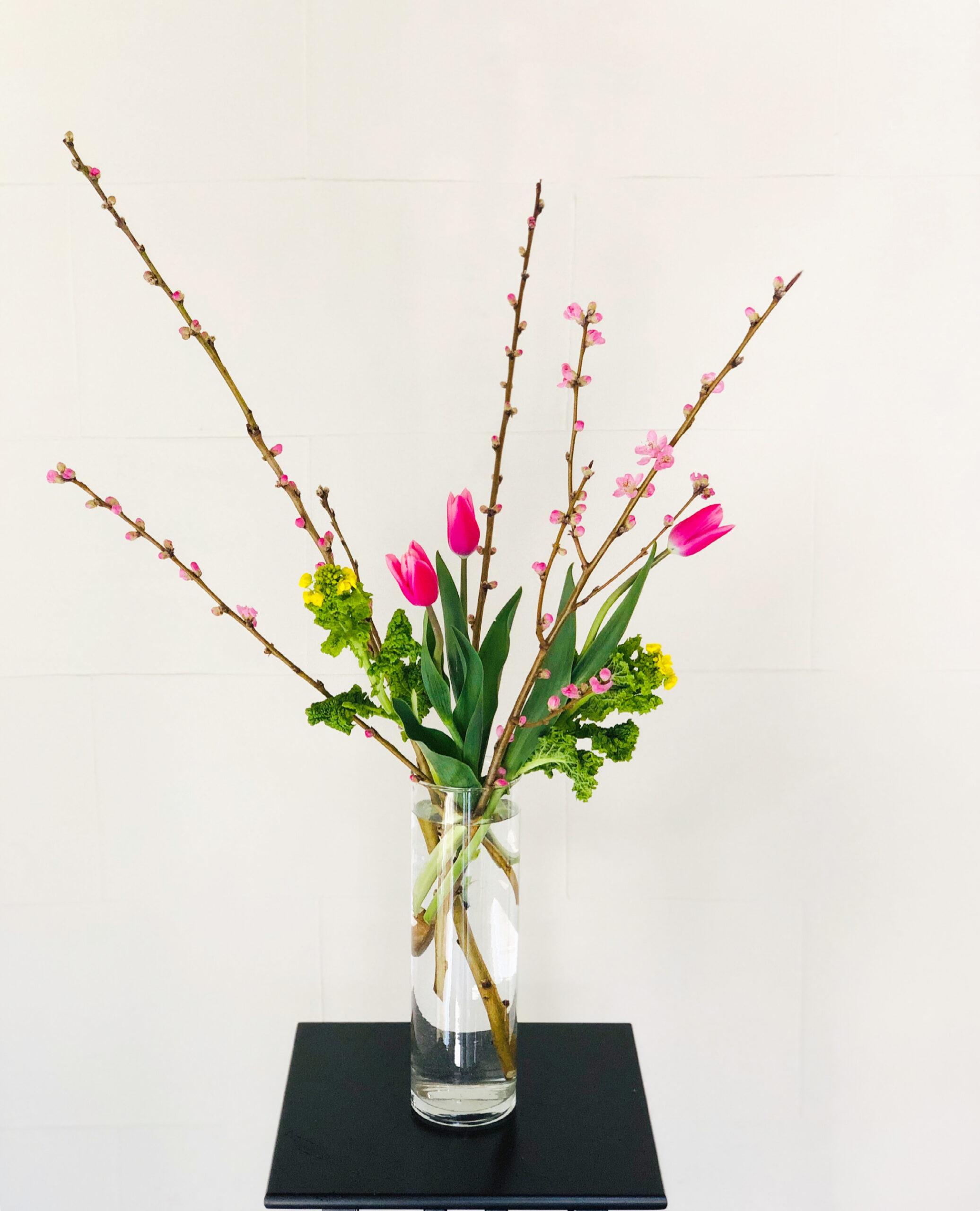 桃の花と菜の花、チューリップ