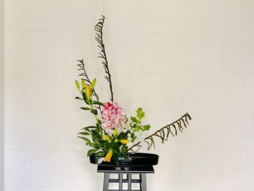 前回のお花