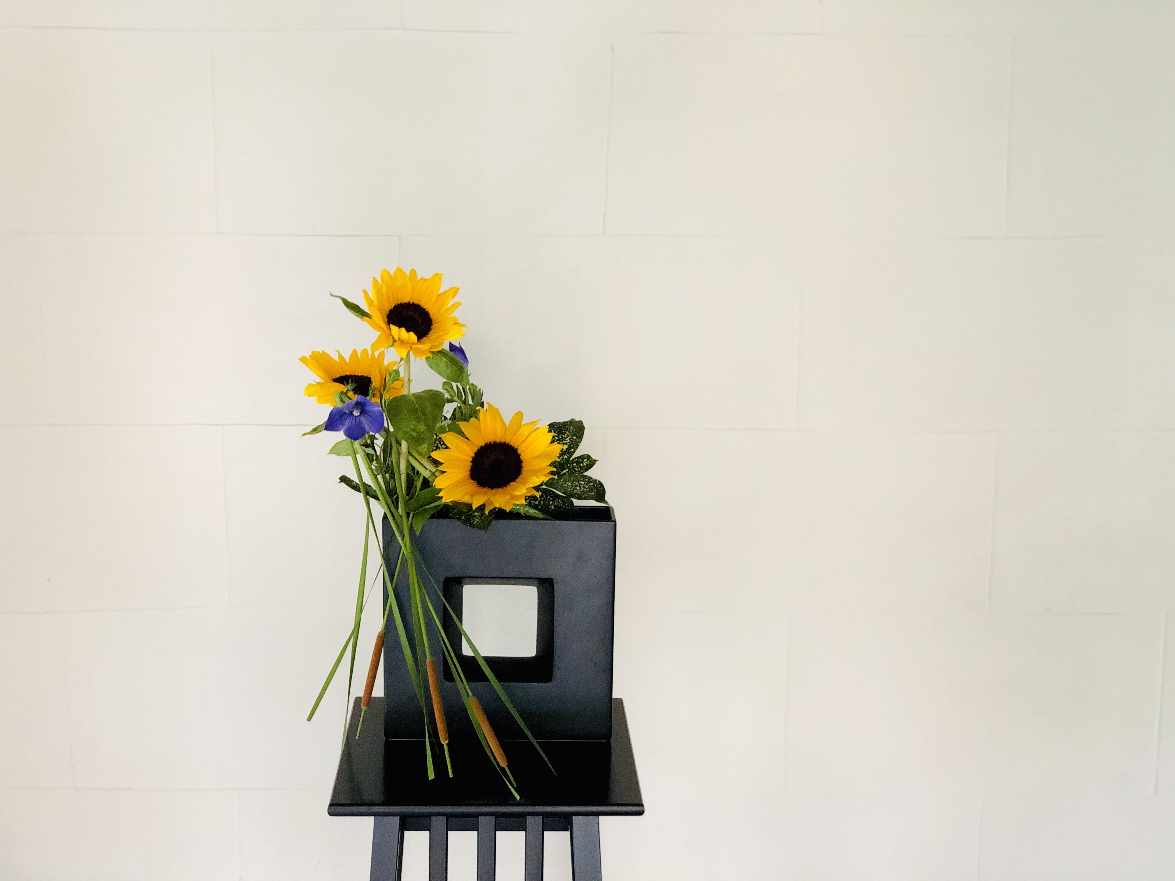 ひまわりとヒメガマの生け花