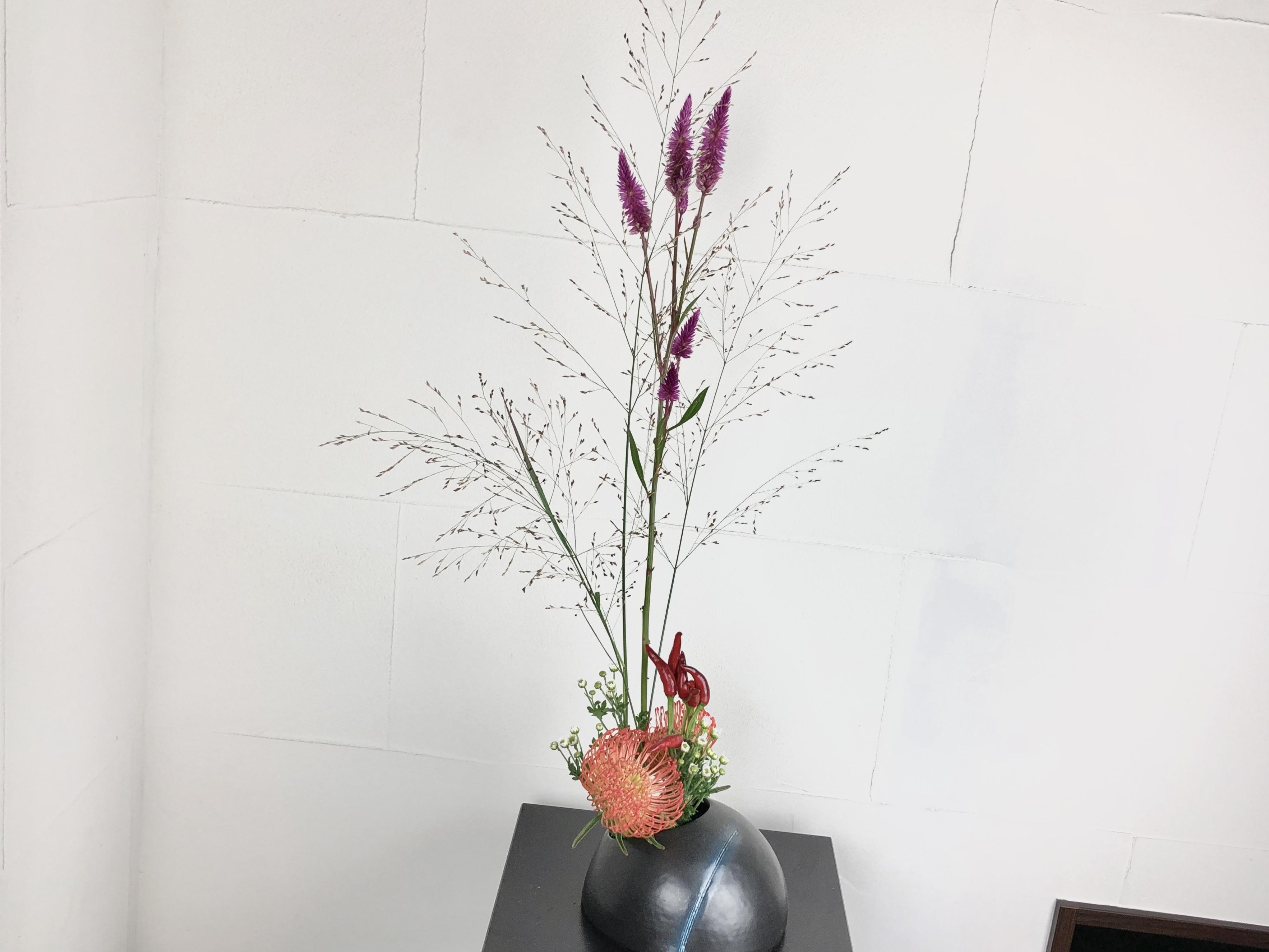 質感の面白いお花