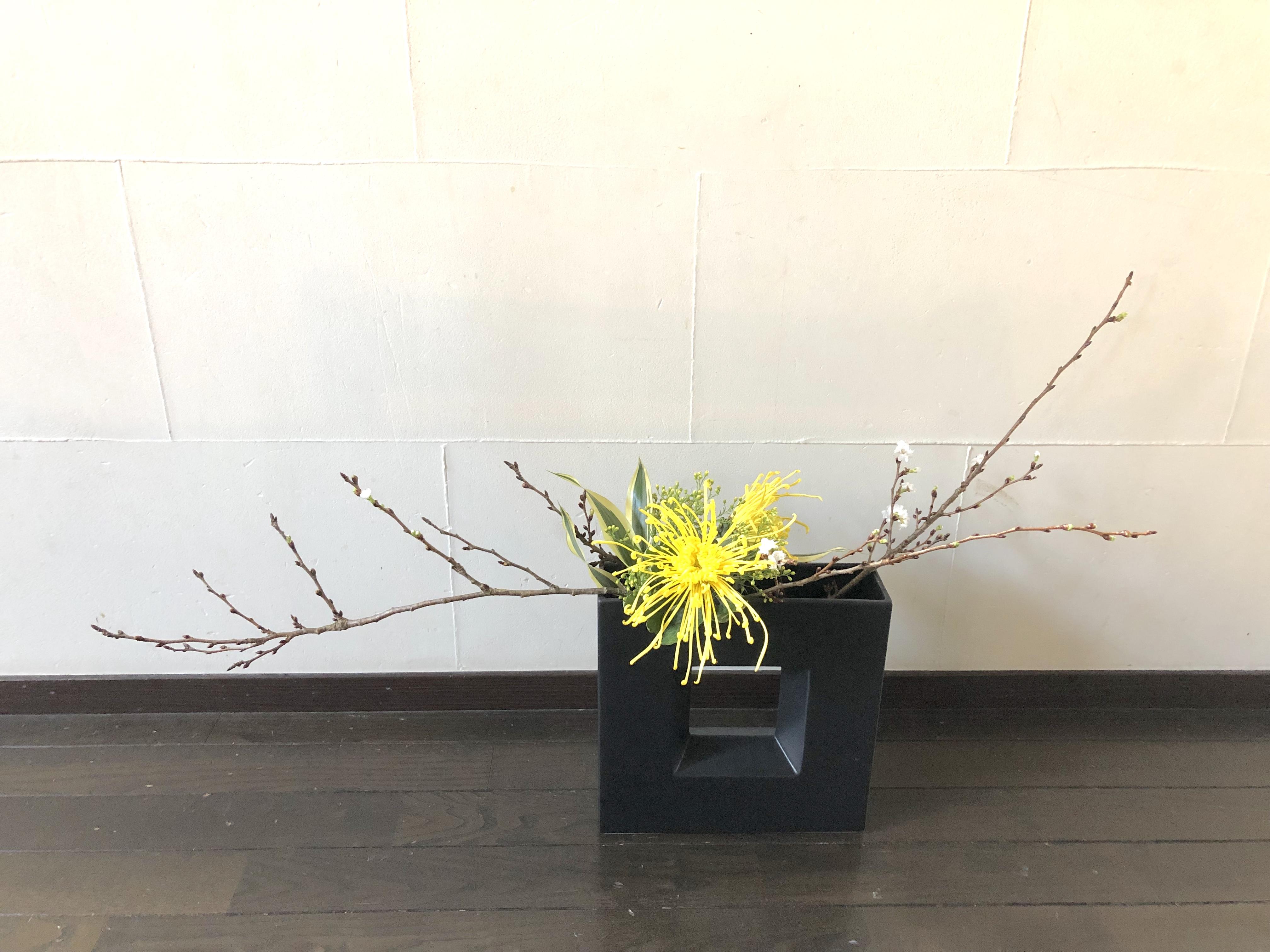 今回はシンプルに。寒桜を使った生け花