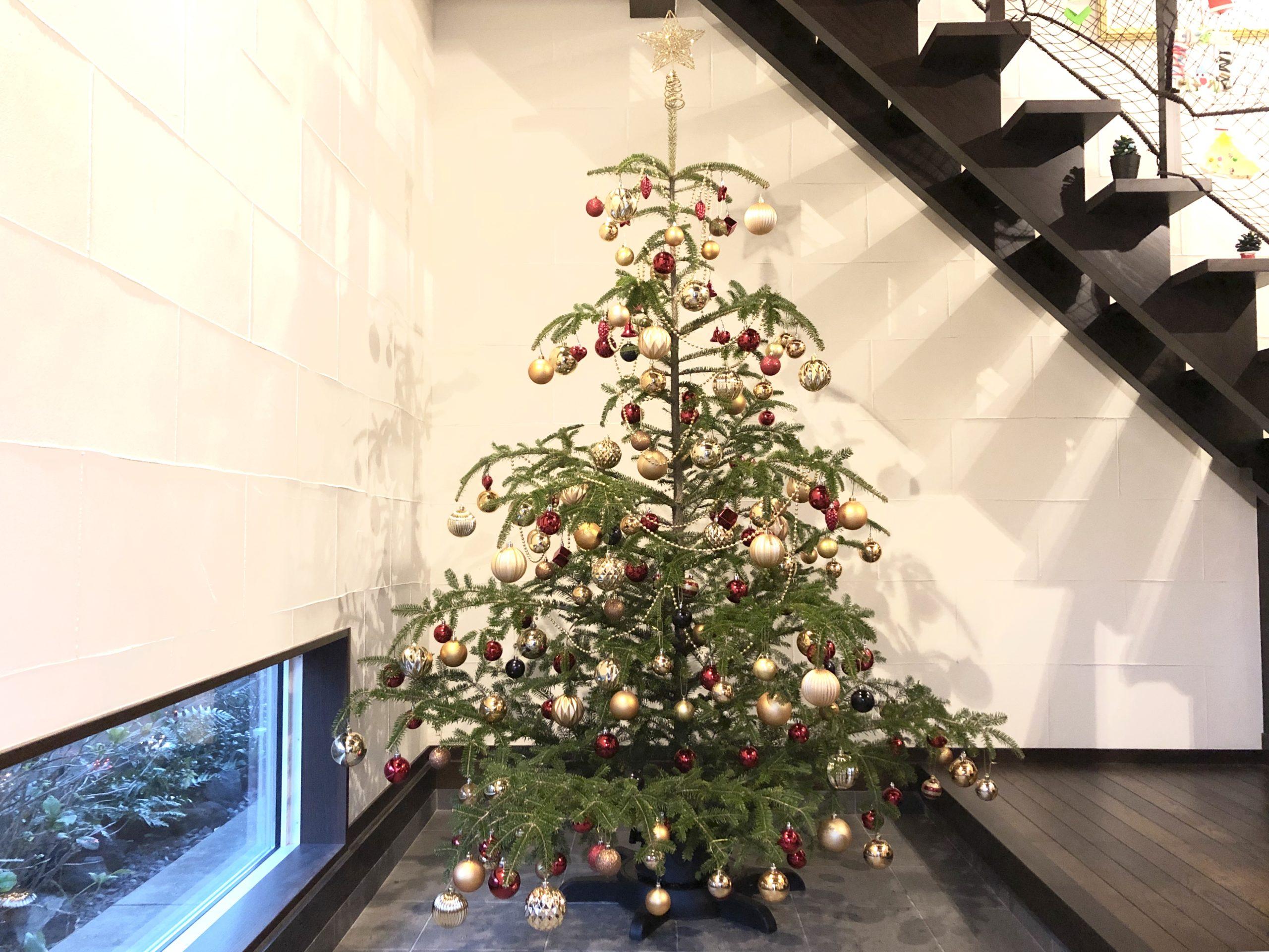 クリスマスツリーred&gold