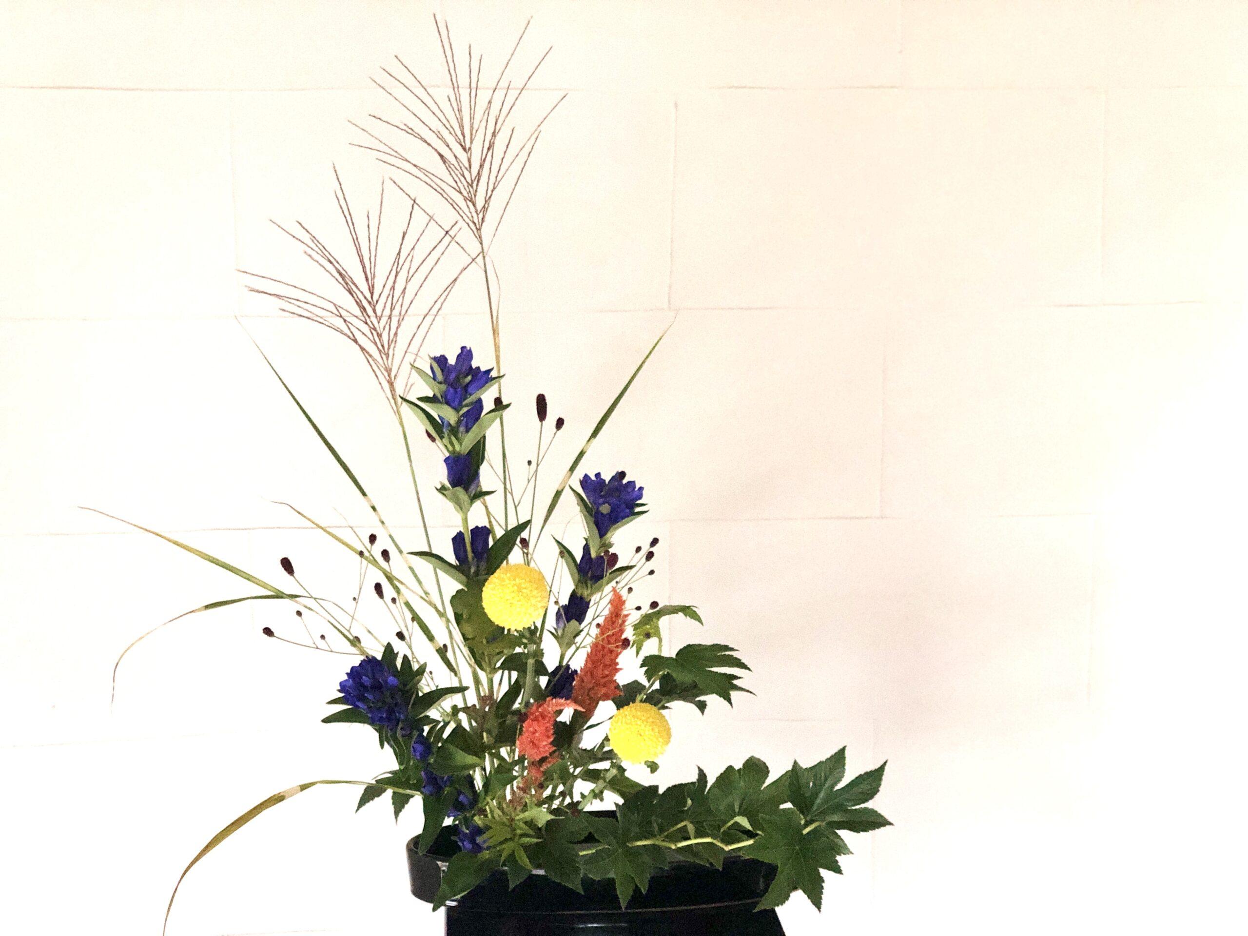 お月見の生け花 すすき、リンドウワレモコウ。秋の花を活ける